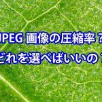 JPEG画像の圧縮率ってなに?どれを選べばいいの?