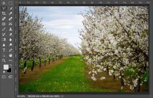 Photoshop色域指定の使い方