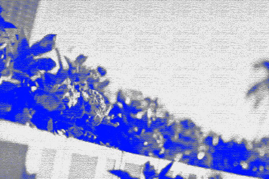 photoshopフィルター_クレヨンのコンテ画