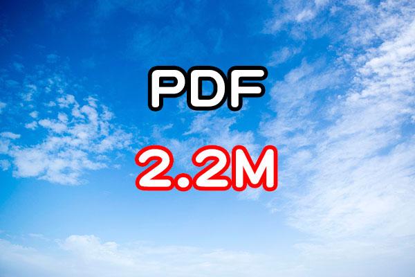 File sizePDF