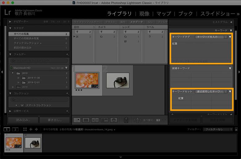 写真管理:Luminar 4は初心者向け、Lightroomは玄人向け