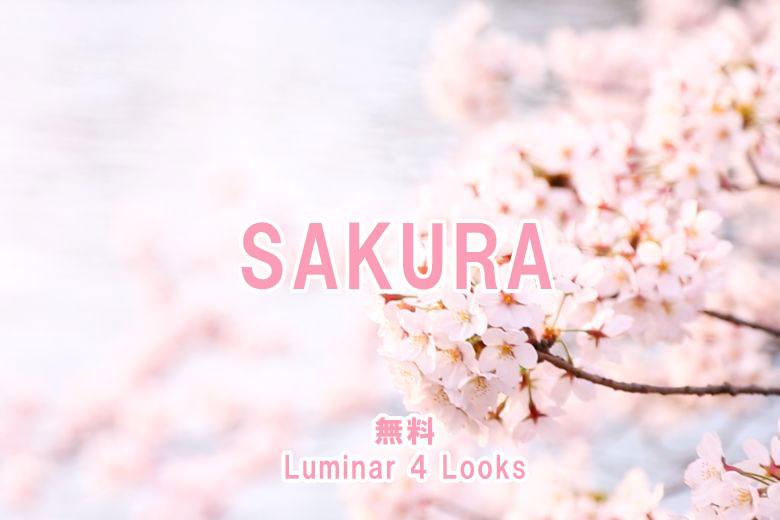 Luminar 4のLooks(プリセット)「SAKURA」