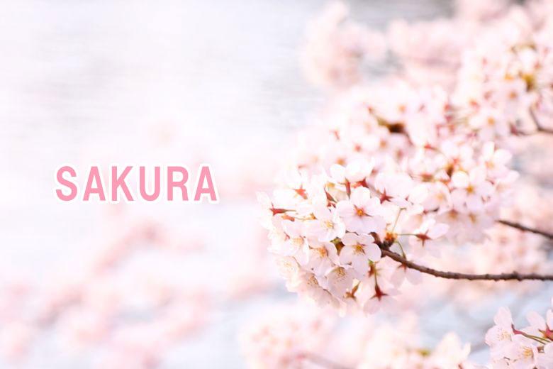 Looks(プリセット)SAKURA
